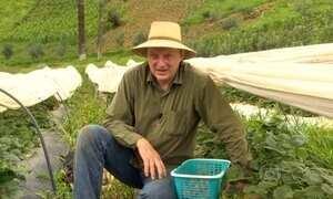 Executivo deixa agitação da capital para plantar orgânicos no Sul de MG