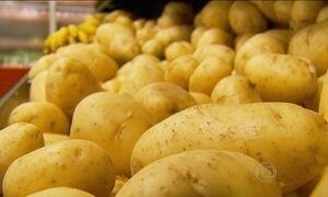 Preço da batata dispara nos supermercados