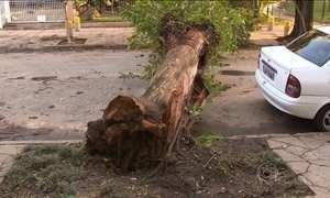 Porto Alegre (RS) decreta situação de emergência após tempestade