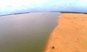 Salinização na foz do Rio São Francisco ameaça peixes e vegetação