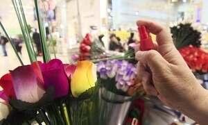 Rosas de madeira perfumadas são ideia para quem quer investir pouco