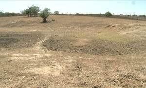 É triste a realidade de dezenas de municípios de AL por causa da seca
