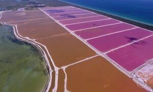 Lagoas de água salgada formam um tabuleiro de cores no México