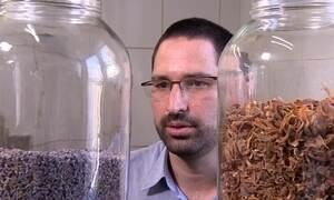 Empresário cria temperos exóticos com base em especiarias da Índia