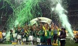 Palmeiras conquista mais um Brasileirão e acaba com jejum de 22 anos