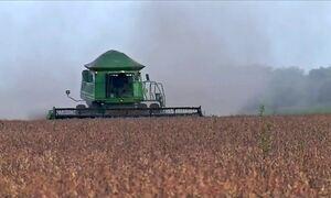Começa a colheita da soja em MT