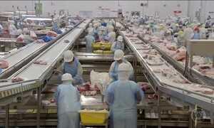 Operação revela venda de carne vencida e moída com papelão