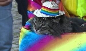 São Paulo tem hotéis lotados às vésperas da Parada do Orgulho LGBT