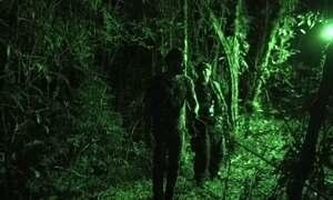 Hoje é dia de sobrevivência na selva: sensibilidade noturna