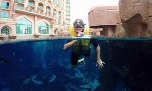 Conheça parque aquático em ilha em formato de palmeira, em Dubai