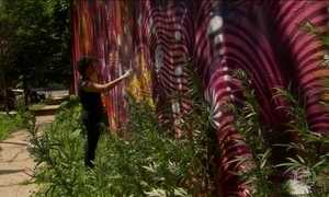 Grafiteira de comunidade do RJ cria painel no berço do hip-hop nos EUA