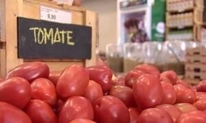 Empresários abrem mercado de produtos variados da cadeia orgânica