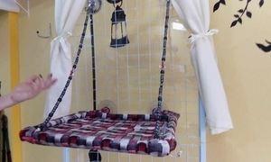 Empresária cria camas suspensas e dobráveis para gatos