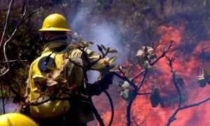 Bombeiros e moradores combatem incêndio na Chapada dos Veadeiros