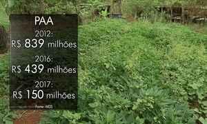 Agricultores sofrem com a redução do Programa de Aquisição de Alimentos