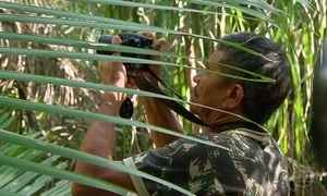 Para preservar fauna nordestina, caçadores trocam armas por câmeras