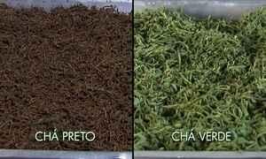 Famílias recuperam o cultivo do chá no Vale do Ribeira (SP)