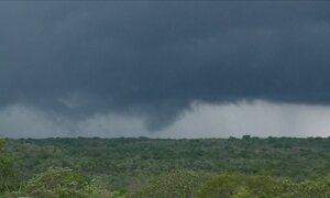 Chuvas devem ajudar agricultores no Piauí a garantirem próxima safra