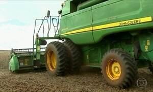 Plantio do milho está atrasado no Paraná