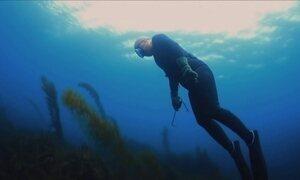 'Sereias coreanas' garantem no fundo do mar o sustento de suas famílias