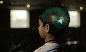 Descubra quais partes do cérebro fazem a gente aprender e lembrar