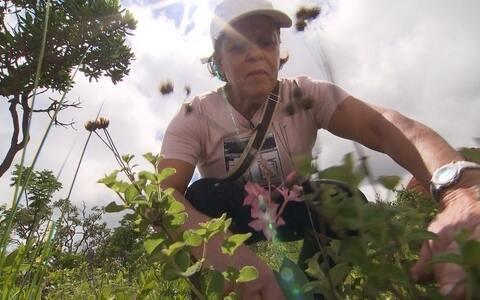 Cientistas fazem pesquisa no Alto Paranaíba