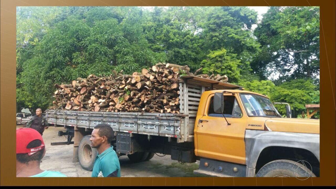 Três pessoas são presas por extração ilegal de madeira em João Pessoa
