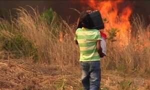 Maranhão decreta situação de emergência por causa das queimadas