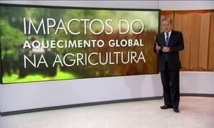 ONU alerta para aumento da pobreza causado pelo aquecimento global