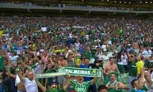 Torcedores palmeirenses comemoram conquista do 9º título no Brasileirão