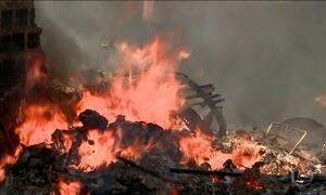 Filhotes de tartarugas ameaçadas de extinção estão morrendo em queimadas em Maceió