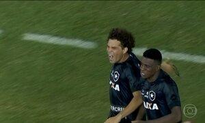 Atlético-PR e Botafogo se classificam na Libertadores da América