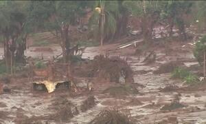 Instituições independentes vão avaliar prejuízos causados por barragem em Mariana