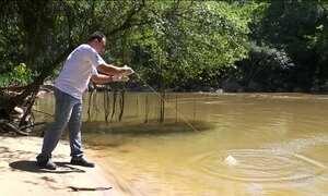 No Dia Mundial da Água, ONG aponta degradação de rios em 11 estados