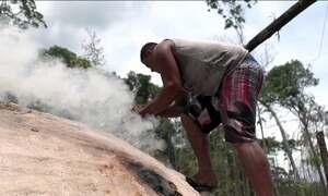 Produção clandestina de carvão sustenta famílias na Amazônia