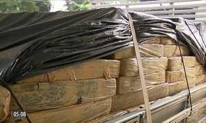 Polícia apreende sete toneladas de maconha em carga de madeira no PR