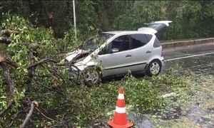 Ventos de 60 Km/h provocam estragos em Salvador