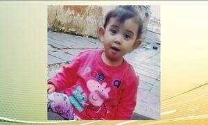 Menina de 1 ano morre após ataque de cachorro da raça pitbull em SP