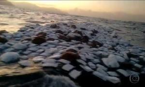 Contêineres caem em Santos, SP, e a carga fica espalhada no mar