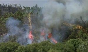Governo de Portugal pede ajuda a países europeus para combater os incêndios florestais
