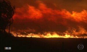 Incêndios florestais provocam desespero em moradores da Califórnia, nos EUA