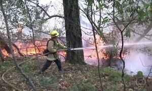Incêndio florestal deixa 40 mortos na Califórnia, nos Estados Unidos