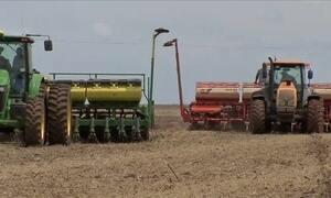 Produção de grãos deve alcançar 228 milhões de toneladas