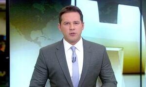 Febre amarela mata 98 pessoas entre julho passado e fevereiro deste ano