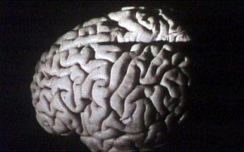 Psicólogos declaram guerra aos cursos de controle da mente - Um grupo de psicólogos, médicos e psiquiatras declarou guerra aos cursos de controle da mente, que atraem um número cada vez maior de pessoas no Brasil. O assunto gera polêmica.