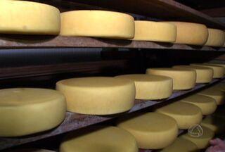 Equipe encontra o famoso queijo de Chapadão do Sul - Equipe encontra o famoso queijo de Chapadão do Sul