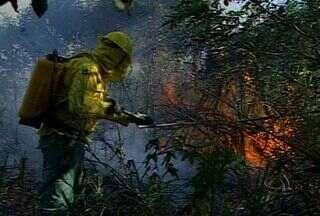 Incêndio se aproxima de área urbana em Corumbá - A região do Pantanal continua sofrendo com queimadas, já são cerca de 580 focos de calor somente nos primeiros dias de agosto. Além dos incêndios na planície pantaneira, brigadistas combatem focos próximo da região urbana.