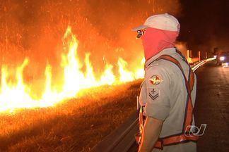 Bombeiros fazem queimada controlada em parque de Goiás - O Corpo de Bombeiros começou, na noite de terça-feira (7), a chamada queimada controlada no Parque Altamiro de Moura Pacheco. O trabalho é para prevenir que a área de preservação ambiental seja destruída com focos de incêndio.