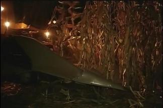 Colheita do milho avança noite adentro - Agricultores querem aproveitar clima favorável e esticam a jornada de trabalho no campo