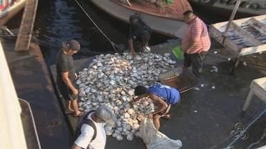 Desperdício de peixe ainda é grande na Feira da Panair, em Manaus - Problema é agravado por causa da ausência de local armazenar pescado.